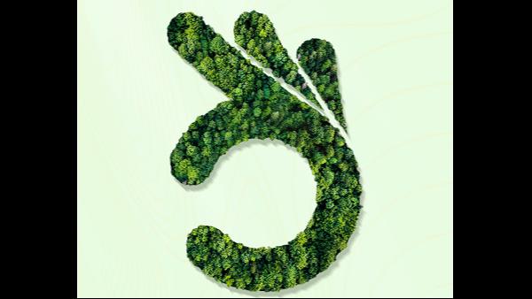 海之隆丨每一片绿荫,都是爱与陪伴!