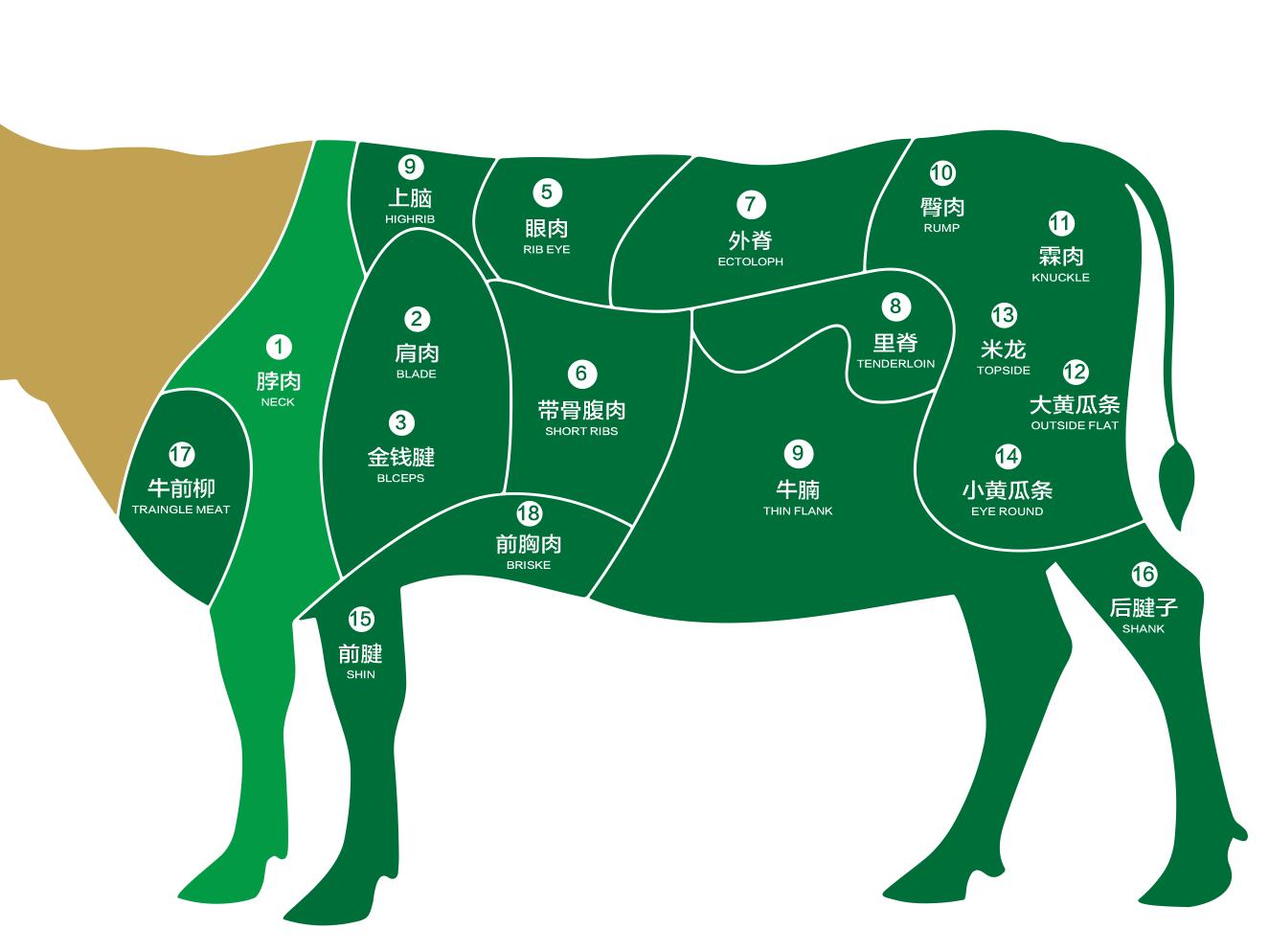 干货丨牛部位肉中英文名称对照表