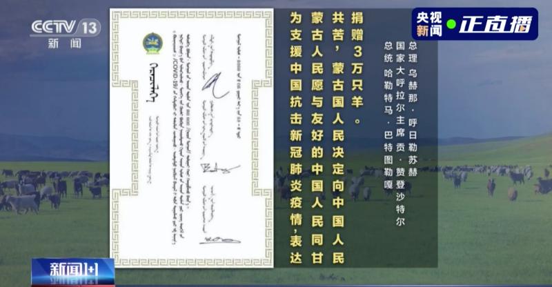 蒙古国捐赠3万只羊